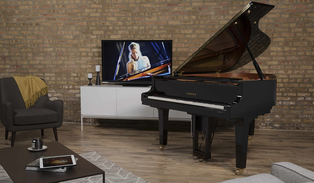 Disklavier les pianos instruments de musique for Piano diviso
