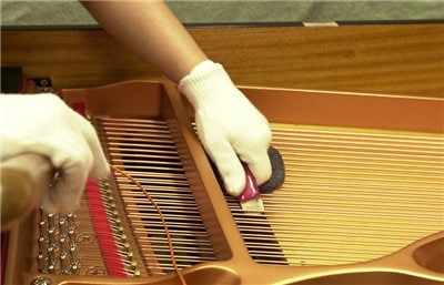 Tuning while plucking the strings